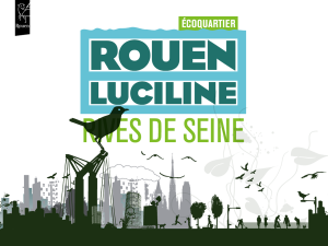 illustration rouen luciline