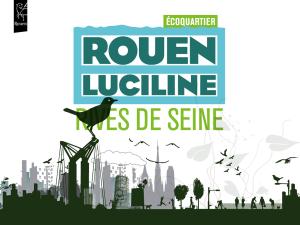 illustration rouen luciline
