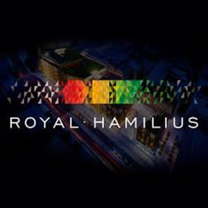 Royal-hamilius-artefacto