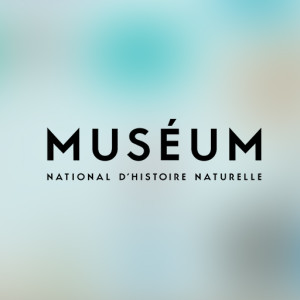 museeum histoire naturelle
